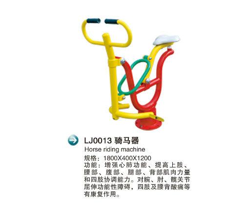 LJ0013