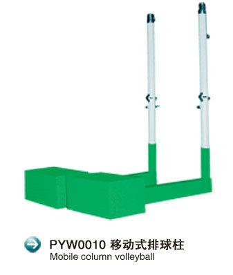PYW0010