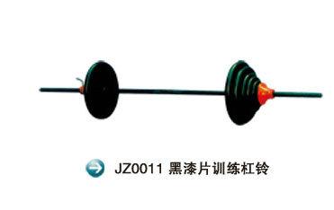 JZ0011
