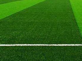 人工草坪 (1)